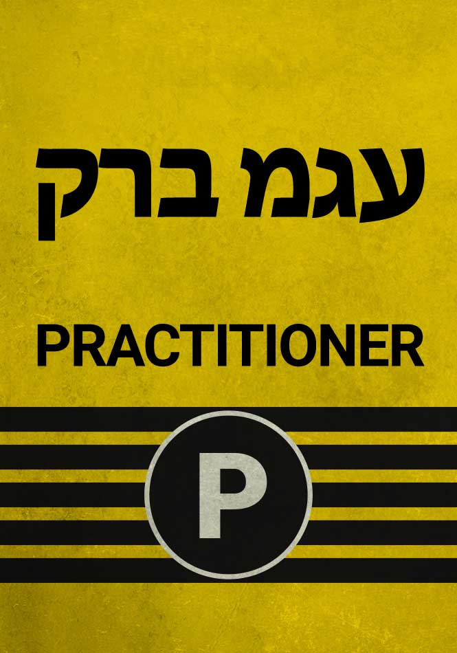 Practitioner Level